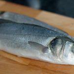 sea bass/ levrek/ lup de mare/ biban de mar